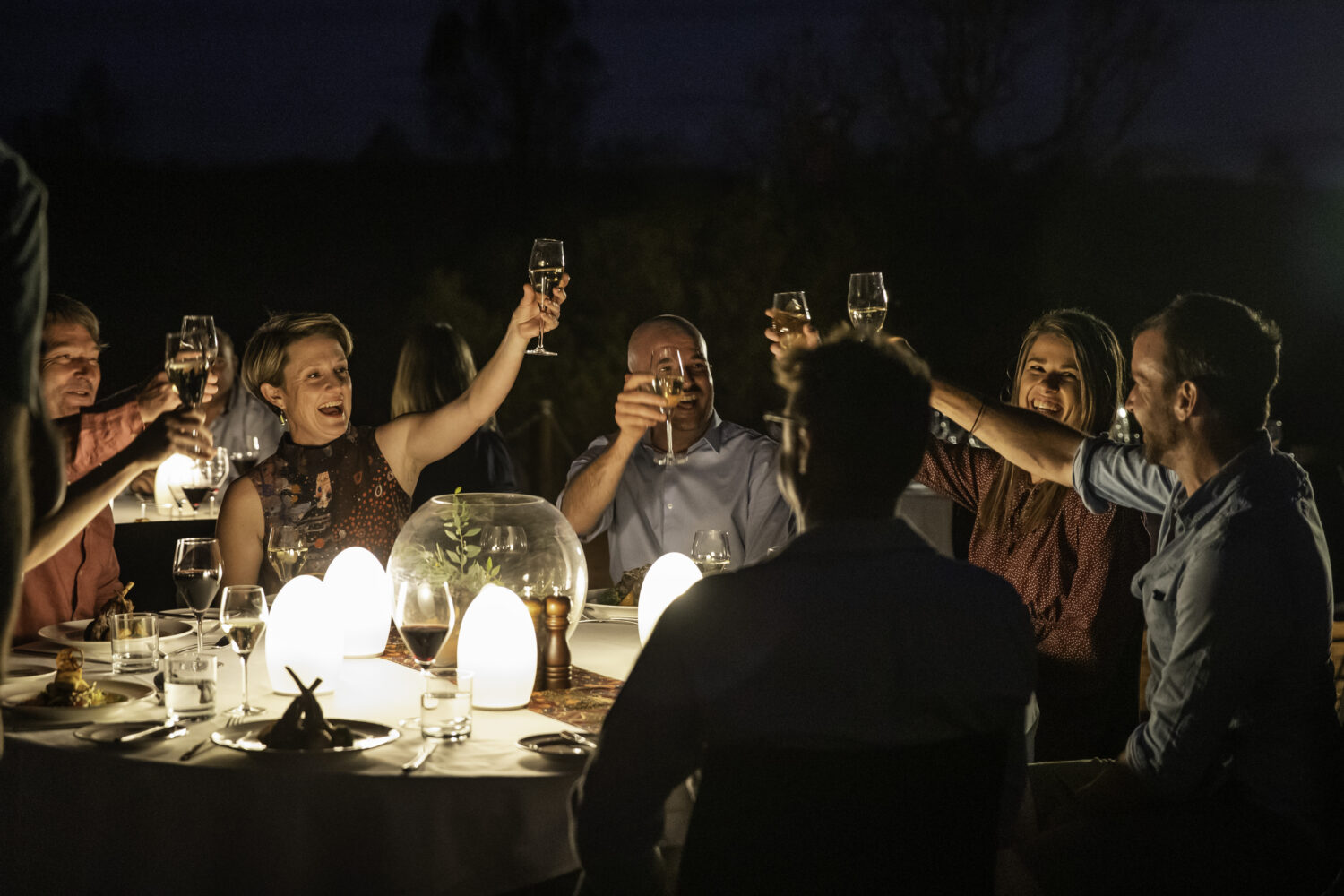 People raising glasses in a toast at dining table