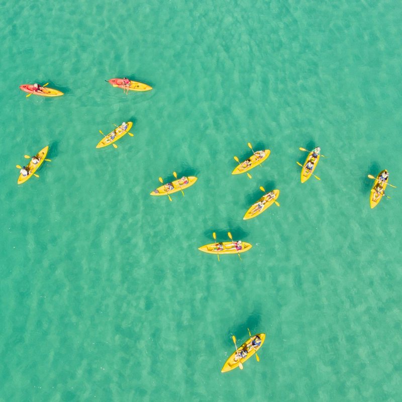 Yellow kayaks in a green sea from above