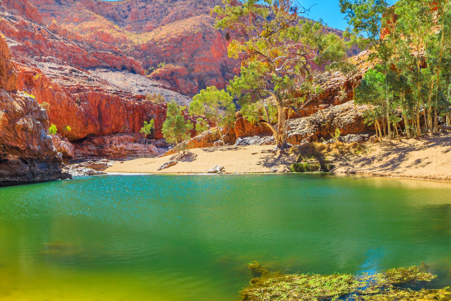 green water with red rock face behind